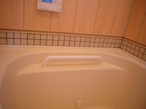 浴槽自体に手すりがあり、より近くで使えます