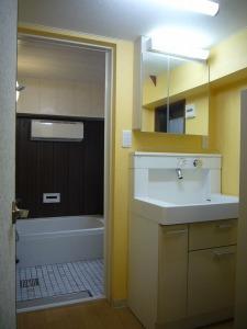 洗面化粧台とミラー収納はセパレート式に