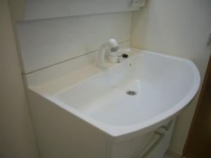 シャワータイプの洗面化粧台