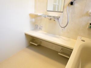 洗い場の大きなカウンター